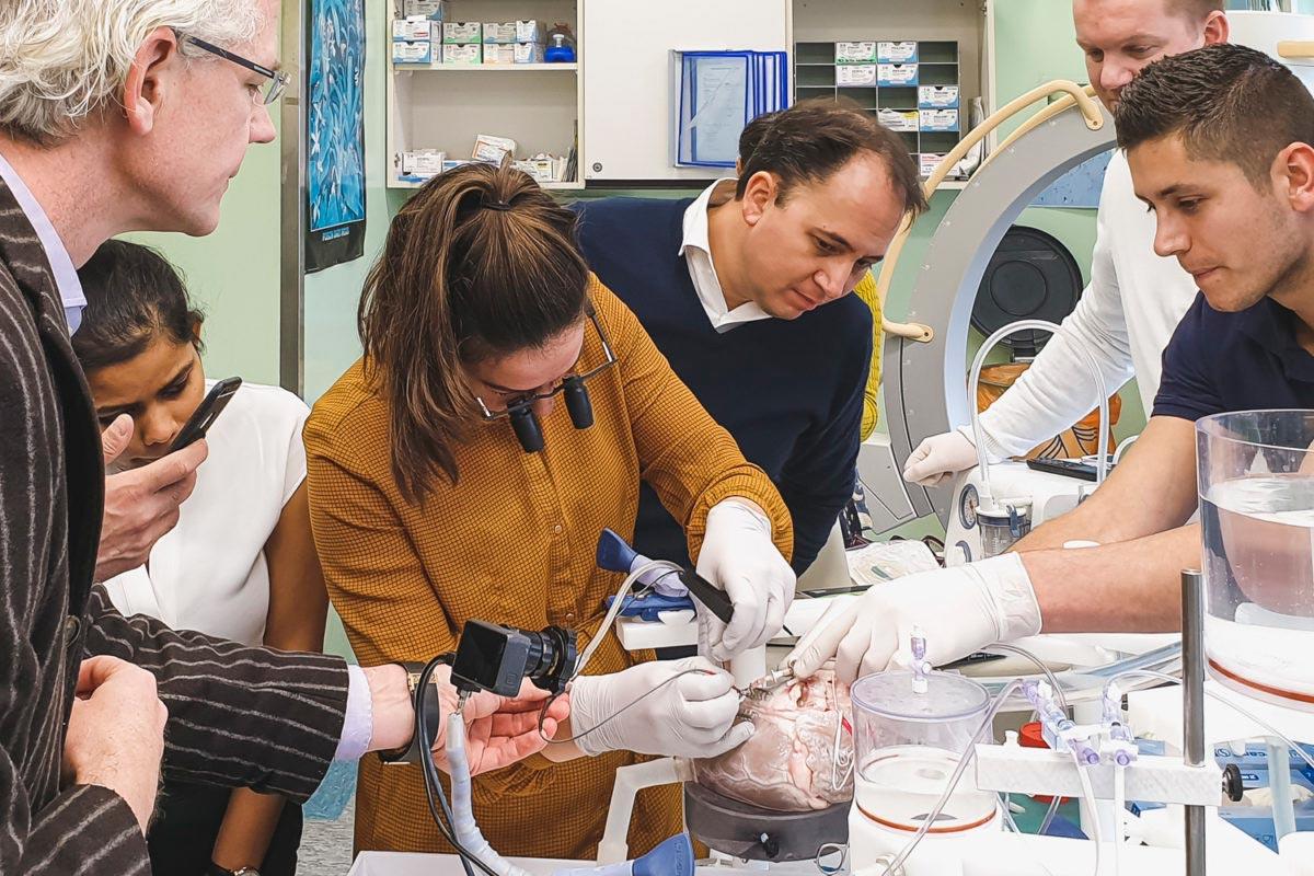 Elana Workshop Horizon 2020 AMT Medical and Hemex